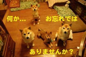 3_20090108023053.jpg