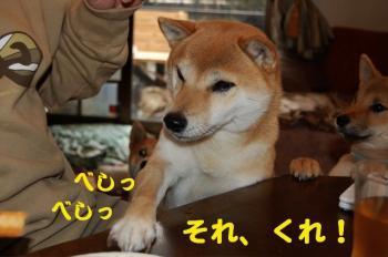 3_20090124214113.jpg
