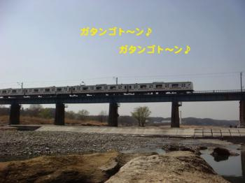 3_20090321012105.jpg