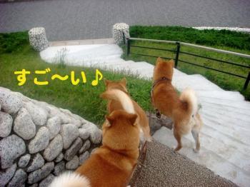 3_20090608223524.jpg