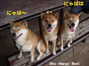 3_20090615181110.jpg