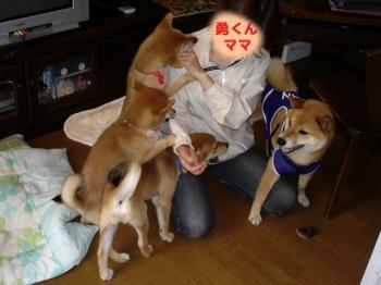 3_20090618000357.jpg