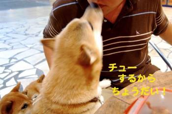 3_20090812192928.jpg