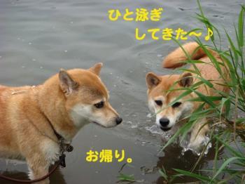 3_20090814171126.jpg