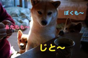 4_20081228003723.jpg