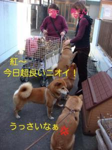 4_20081231001214.jpg