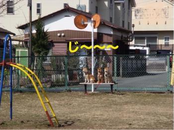 4_20090220005327.jpg