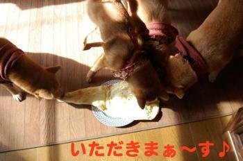 4_20090223004855.jpg