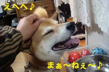 4_20090416004448.jpg