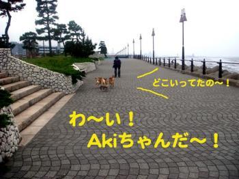 4_20090608225634.jpg