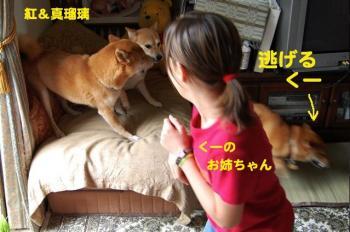 4_20090613211143.jpg