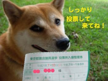 4_20090713020701.jpg