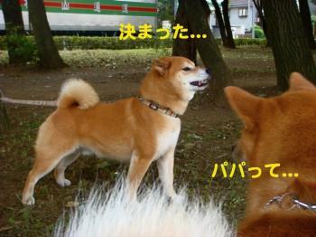 4_20090823001213.jpg