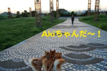 4_20090908001006.jpg