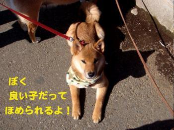 5_20090222013621.jpg