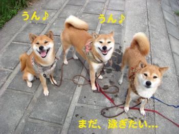 5_20090513205741.jpg
