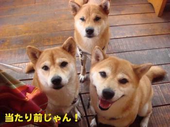 5_20090709232404.jpg