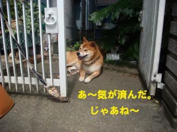 6_20090620014429.jpg