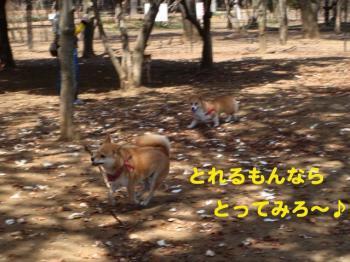 7_20090409213600.jpg