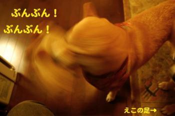 7_20090410194255.jpg