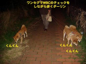 8_20090310020026.jpg