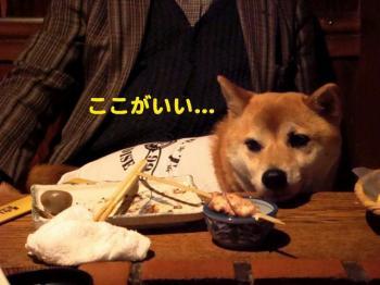 8_20090430201347.jpg
