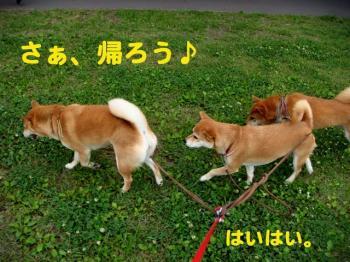 8_20090603225118.jpg