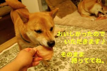 8_20090612073153.jpg