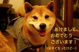 9_20090105000130.jpg