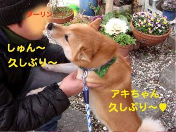 9_20090211221315.jpg