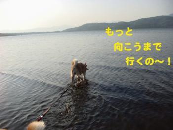 9_20090522192831.jpg