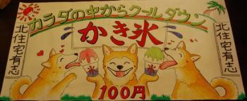 DSC_0022_2_20090724000802.jpg