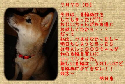 kubiwaぬけ日記