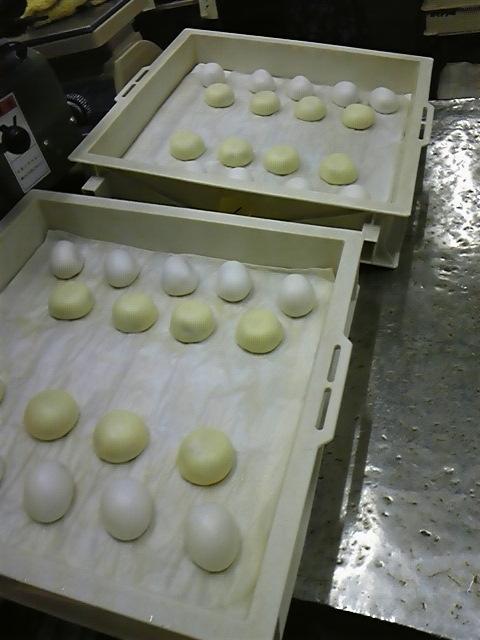 饅頭画像 254