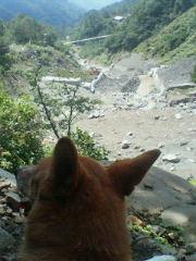 エル土石流