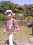 小石川植物園4