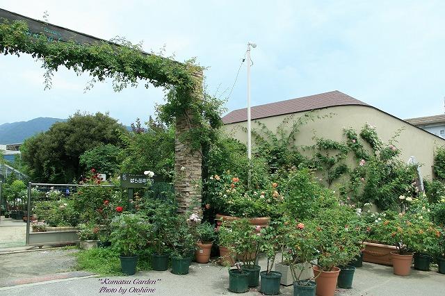 eIMG_9743komatsu garden