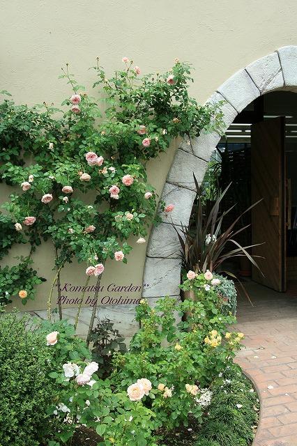 eIMG_9720komatsu garden