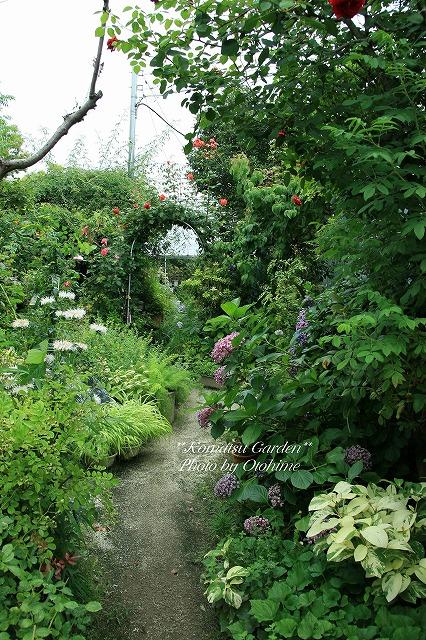 eIMG_9717komatsu garden