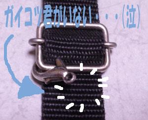 09020601.jpg