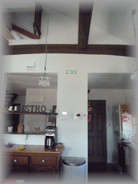 P1040982_20110216141318.jpg