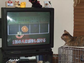 TVを見る2