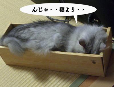 寝よう10