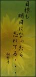 haiku30.png