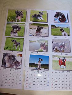 IMG_2144 カレンダー