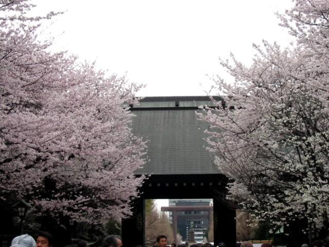 20年3月30日東京総会 025