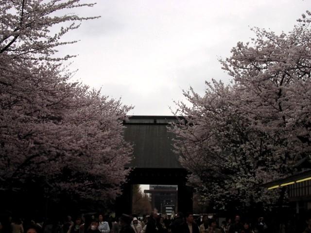 20年3月30日東京総会 027