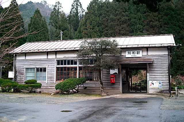tiwaeki