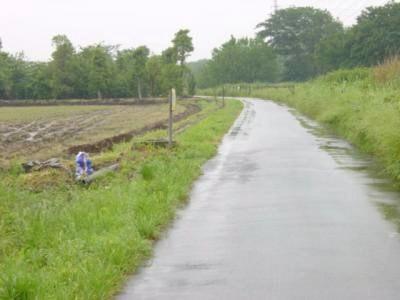 田んぼへの道