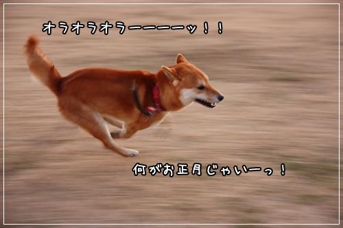 200901046.jpg